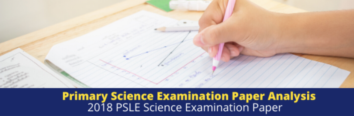 2019 PSLE Science Examination Paper Analysis