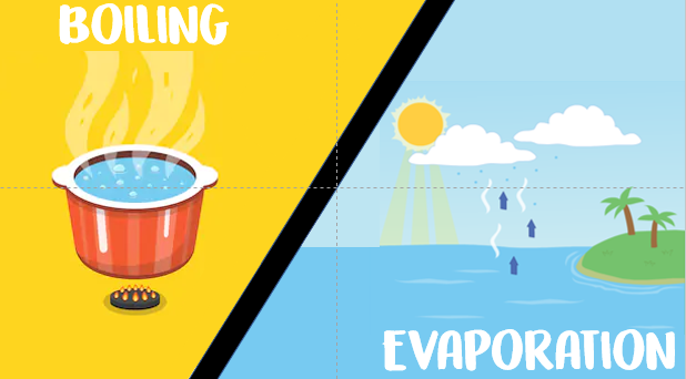 PSLE SCIENCE | Boiling VS Evaporation!